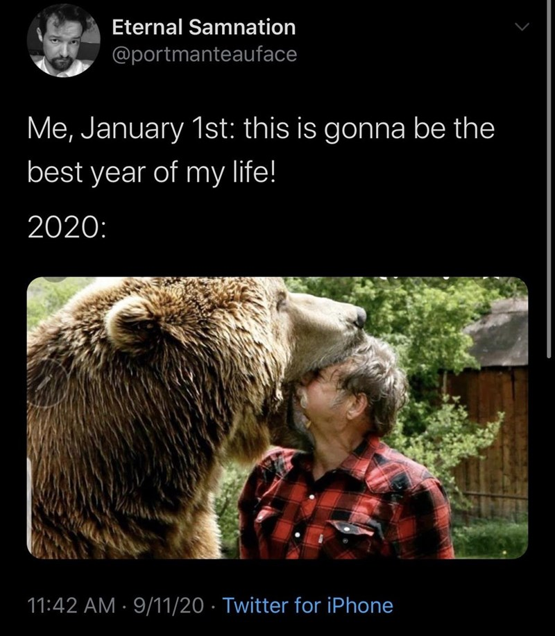 Brown bear - Eternal Samnation @portmanteauface Me, January 1st: this is gonna be the best year of my life! 2020: 11:42 AM · 9/11/20 · Twitter for iPhone