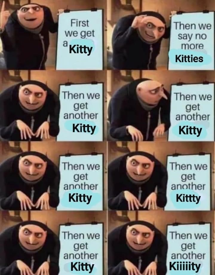 Facial expression - First we get a Kitty Then we say no more a Kitties Then we Then we get another get another Kitty Kitty Then we get another Kitty Then we get another Kittty Then we Then we get another get another Kitty Kiiiiity