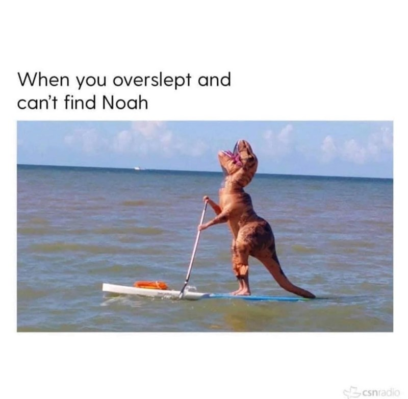 Stand up paddle surfing - When you overslept and can't find Noah Scsnradio