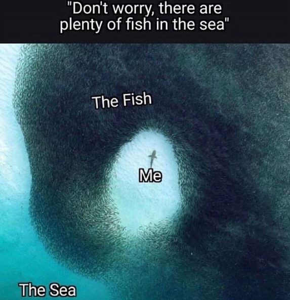 """Text - """"Don't worry, there are plenty of fish in the sea"""" The Fish Me The Sea"""