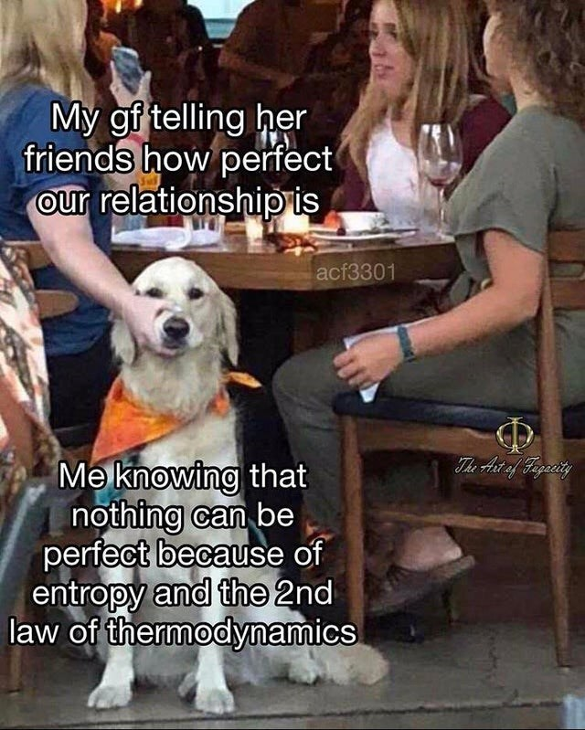 Dog - My gf telling her friends how perfect our relationship is acf3301 The Ast af Figacity Me knowing that nothing can be perfect because of entropy and the 2nd law of thermodynamics