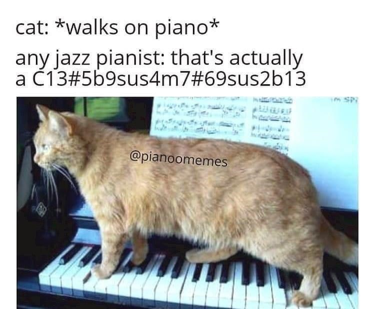 Cat - cat: *walks on piano* any jazz pianist: that's actually a Č13#5b9sus4m7#69sus2b13 im SPI @pianoomemes