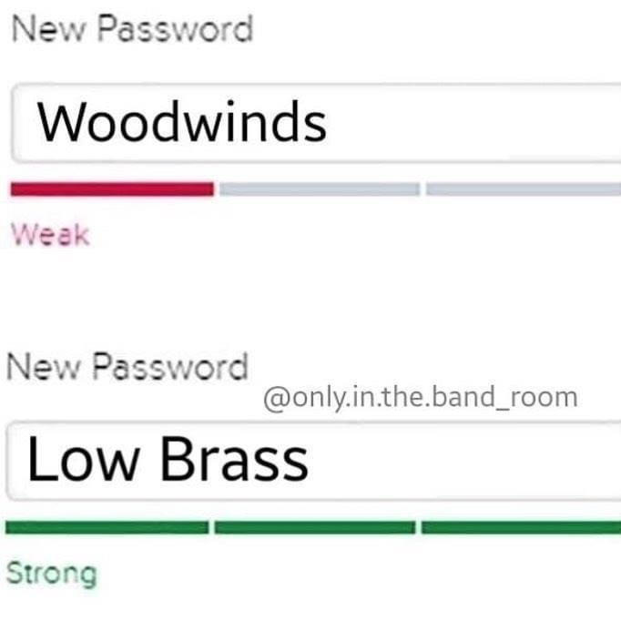 Text - New Password Woodwinds Weak New Password @only.in.the.band_room Low Brass Strong