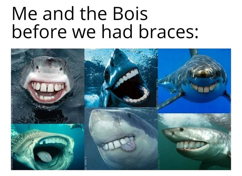 Fish - Me and the Bois before we had braces: OOK-TOTALLEK C. KICK- TO TOTALLEHO