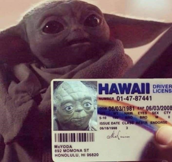 Fictional character - HAWAII DRIVER LICENS NUMBER 01-47-87441 DOs 06/03/1981 EXP 06/03/2008 WI HAIR EYES SEX CTY BRO BnO ISSUE DATE CLASS RESTR ENDORSE 5-10 190 06/18/1998 MCYODA 892 MOMONA ST HONOLULU, HI 96820