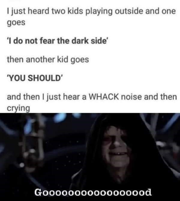 """Text - I just heard two kids playing outside and one goes 'I do not fear the dark side then another kid goes """"YOU SHOULD' and then I just hear a WHACK noise and then crying Goo0000000000000od"""
