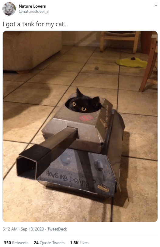 Cat - Nature Lovers @natureslover_s I got a tank for my cat... HOVS MY PRAN CA ITION WCOA 6:12 AM - Sep 13, 2020 · TweetDeck 1.8K Likes 24 Quote Tweets 350 Retweets