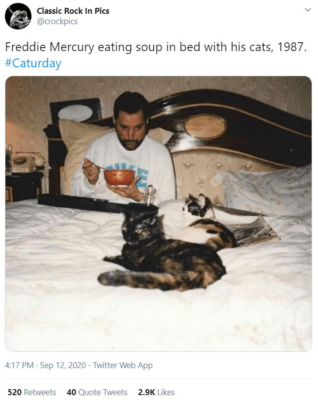 Canidae - Classic Rock In Pics @crockpics Freddie Mercury eating soup in bed with his cats, 1987. #Caturday 4:17 PM · Sep 12, 2020 · Twitter Web App 520 Retweets 40 Quote Tweets 2.9K Likes