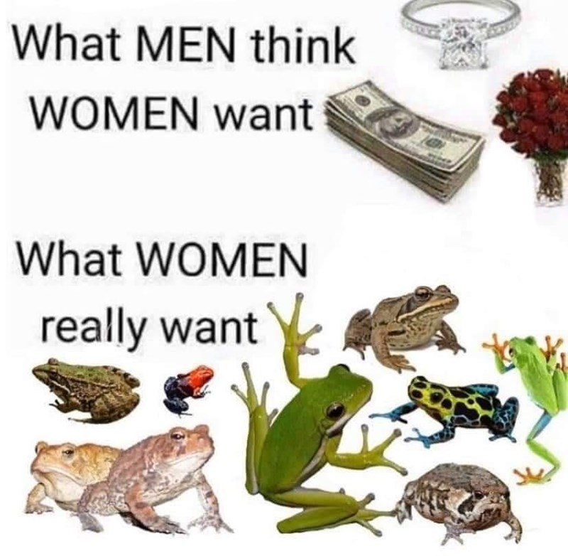 Toad - What MEN think WOMEN want What WOMEN really want