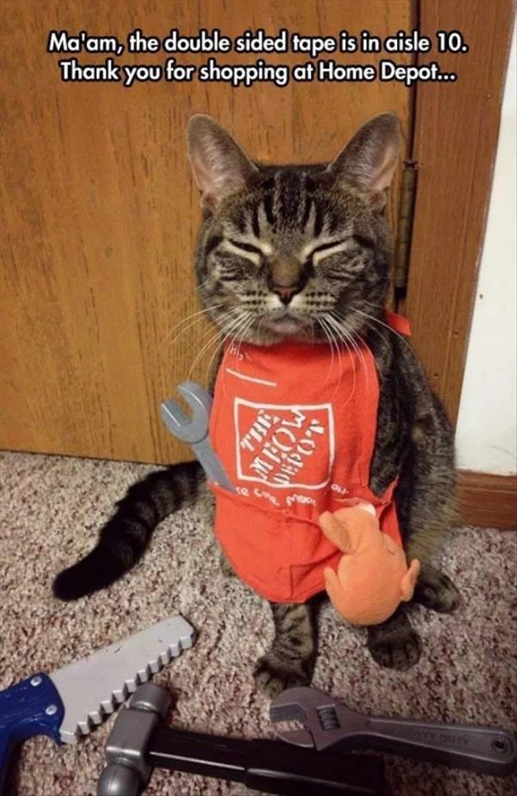 Cat - Ma'am, the double sided tape is in aisle 10. Thank you for shopping at Home Depo... MEOW