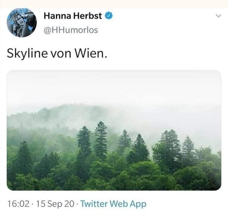 Natural landscape - Hanna Herbst @HHumorlos Skyline von Wien. 16:02 · 15 Sep 20 · Twitter Web App