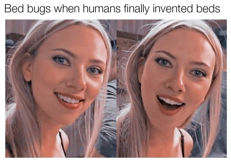 Face - Bed bugs when humans finally invented beds