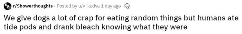 Text - r/Showerthoughts Posted by u/v_kudva 1 day ago We give dogs a lot of crap for eating random things but humans ate tide pods and drank bleach knowing what they were