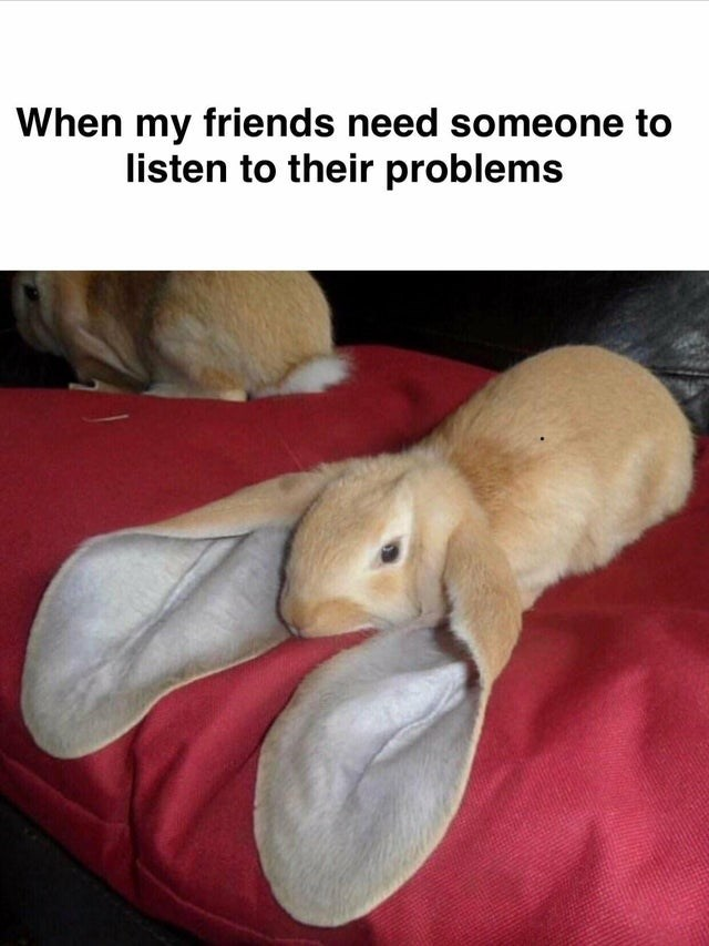 Rabbit - When my friends need someone to listen to their problems