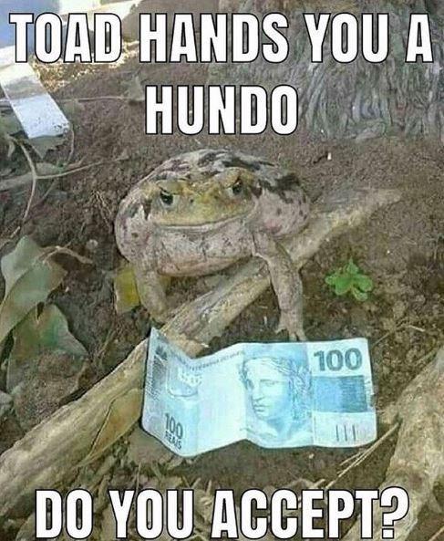 Amphibian - TOAD HANDS YOU A HUNDO 100 100 REAIS DO YOU ACCEPT?