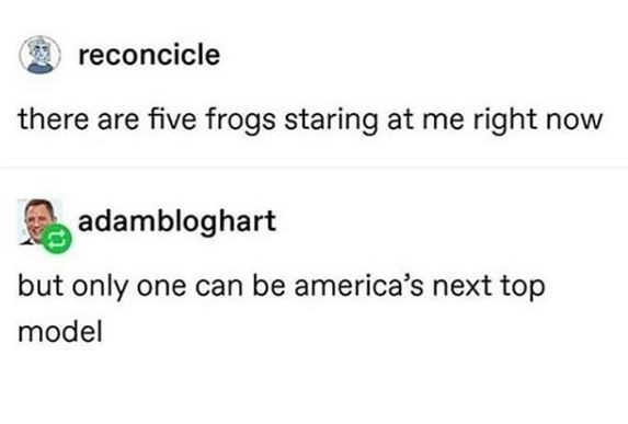Text - reconcicle there are five frogs staring at me right now adambloghart but only one can be america's next top model