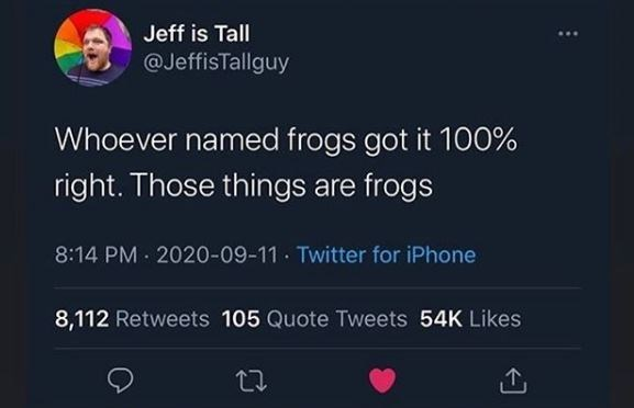 Text - Jeff is Tall @JeffisTallguy Whoever named frogs got it 100% right. Those things are frogs 8:14 PM · 2020-09-11 · Twitter for iPhone 8,112 Retweets 105 Quote Tweets 54K Likes 27