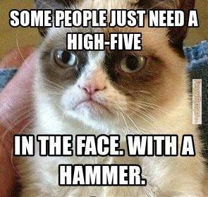 Cat - SOME PEOPLE JUST NEED A HIGH-FIVE IN THE FACE. WITHA HAMMER. Fungyene