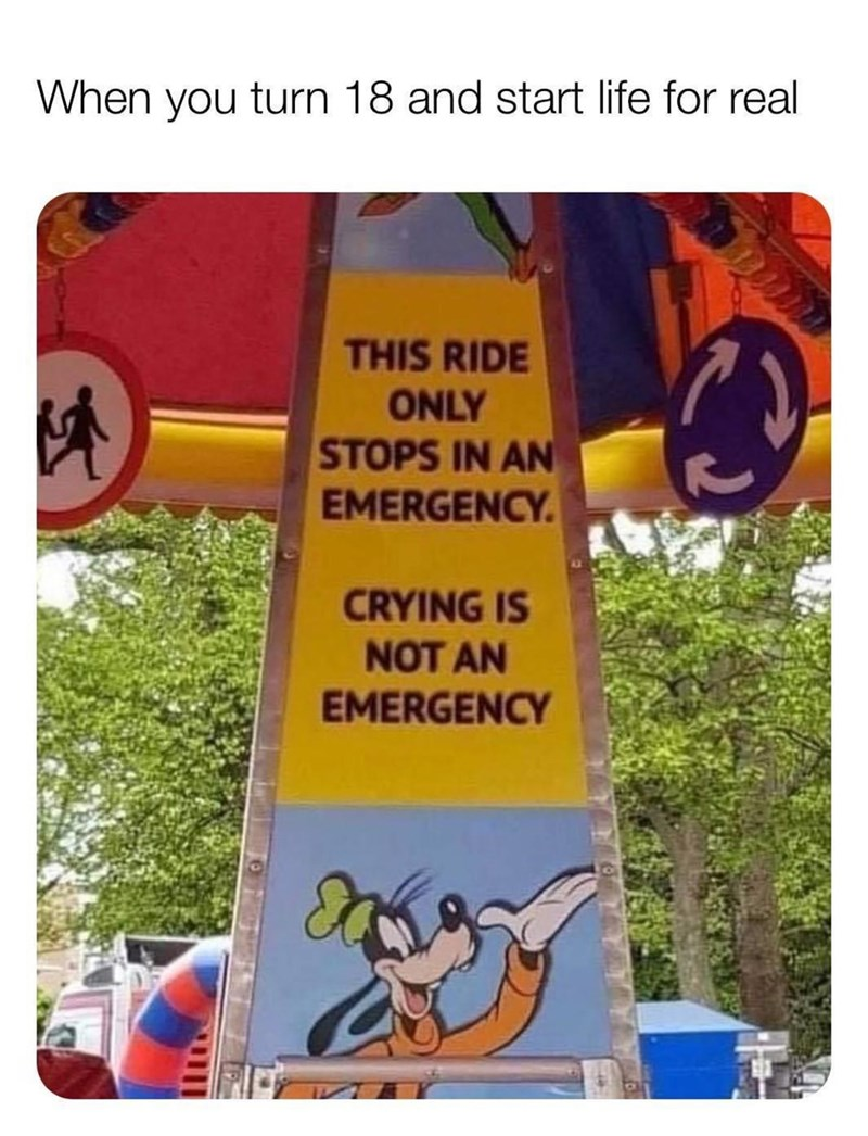 Text - When you turn 18 and start life for real THIS RIDE ONLY STOPS IN AN EMERGENCY. CRYING IS NOT AN EMERGENCY