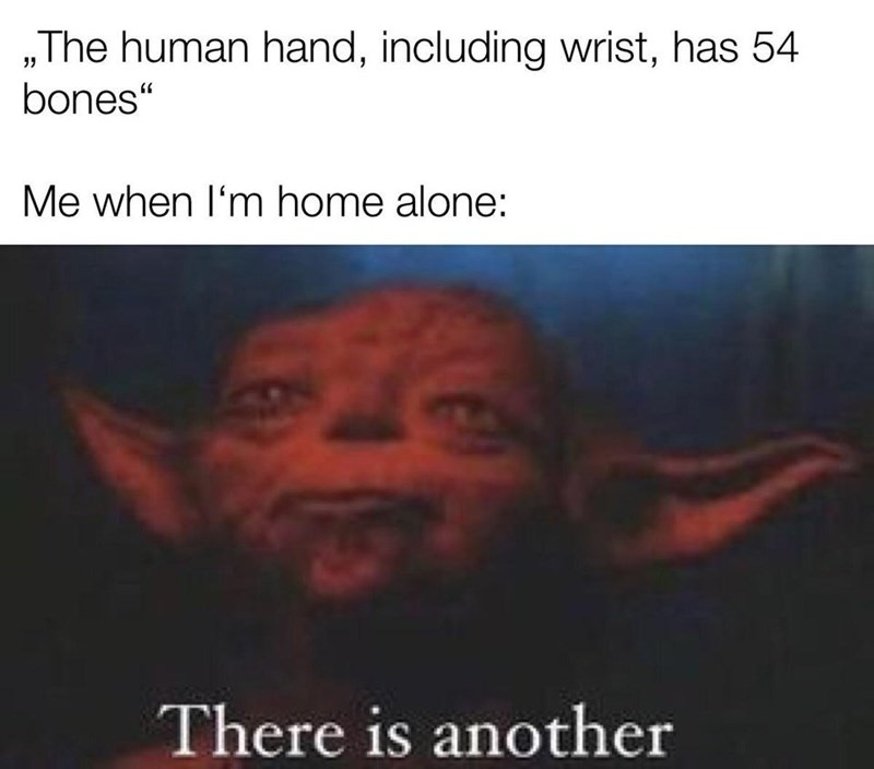 """Text - """"The human hand, including wrist, has 54 bones"""" Me when I'm home alone: There is another"""