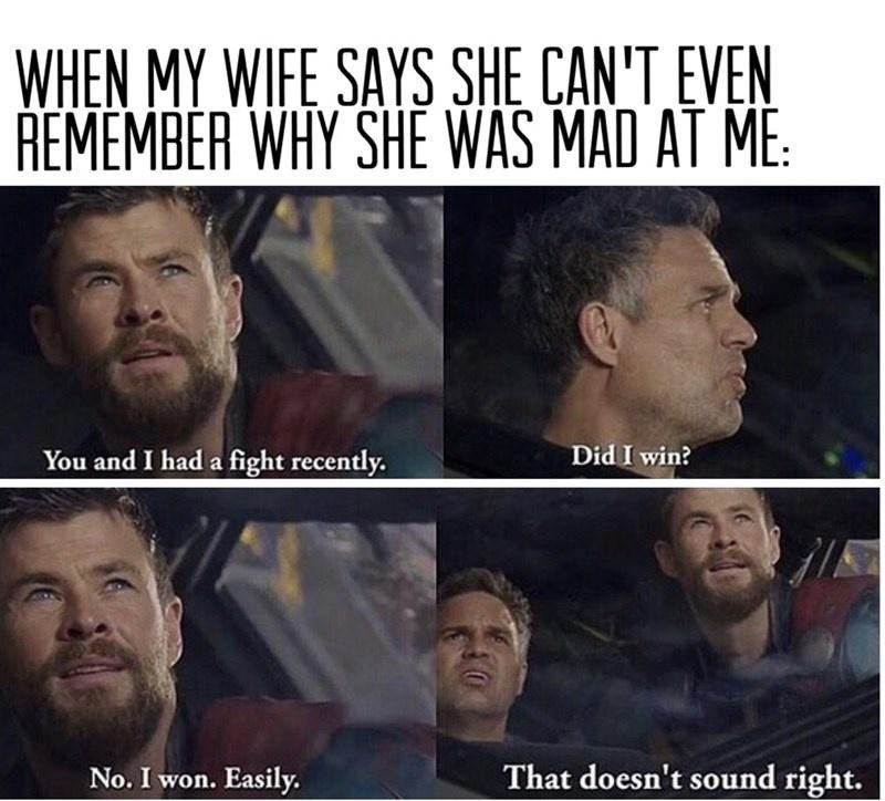 Facial expression - WHEN MY WIFE SAYS SHE CAN'T EVEN REMEMBER WHY SHE WAS MAD AT ME: You and I had a fight recently. Did I win? No. I won. Easily. That doesn't sound right.
