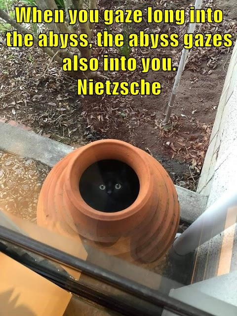 lolcats - Pipe - When you gaze long into the abyss, the abyss gazes also into you. Nietzsche