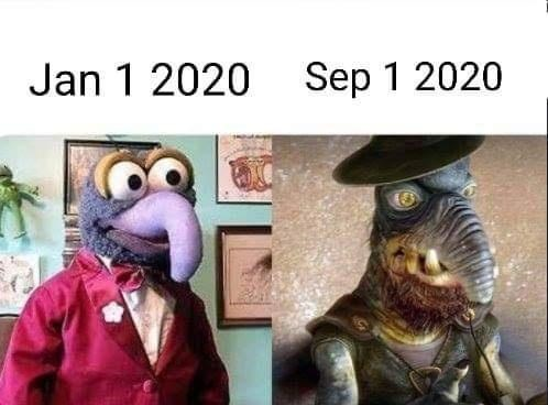 Funny meme about how one looked on January 1st of 2020 vs. now, featuring Muppets and Star Wars