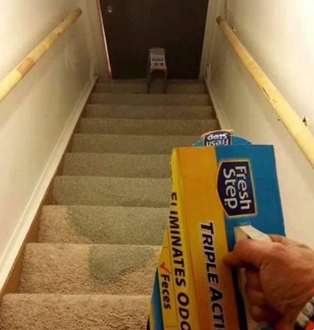 Floor - Fresm Stop Fresh Step TRIPLE ACTI CLIMINATES ODO Feces