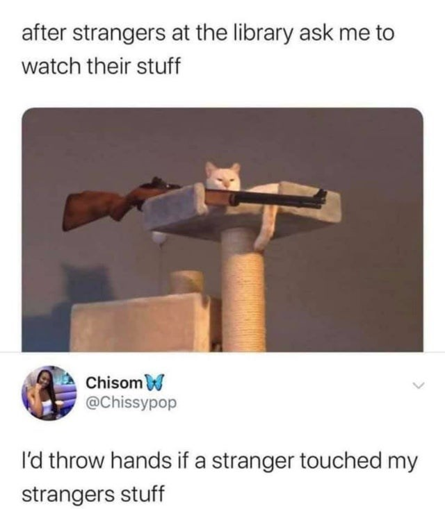 after strangers at the library ask me to watch their stuff w Chisom @Chissypop I'd throw hands if a stranger touched my strangers stuff cat sniper gun