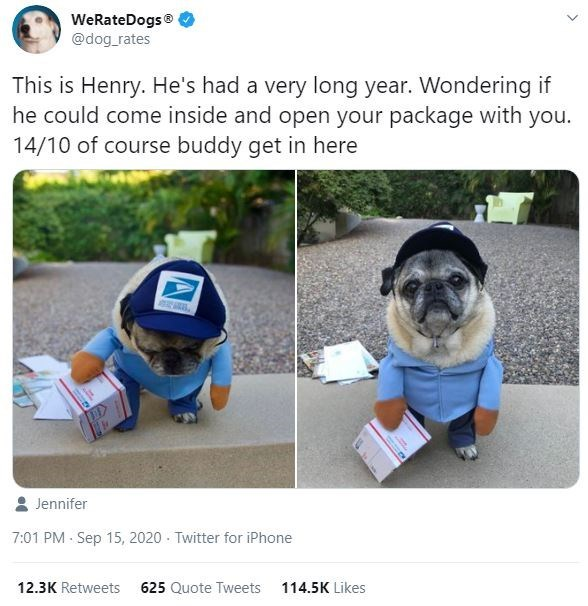 Dog clothes - WeRateDogs® @dog_rates This is Henry. He's had a very long year. Wondering if he could come inside and open your package with you. 14/10 of course buddy get in here Jennifer 7:01 PM - Sep 15, 2020 - Twitter for iPhone 12.3K Retweets 625 Quote Tweets 114.5K Likes
