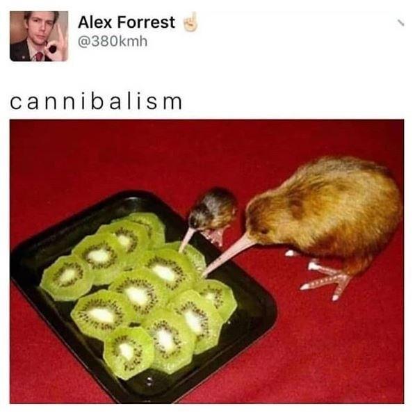Rat - Alex Forrest @380kmh cannibalism