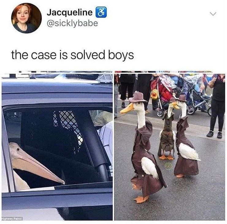 Vehicle door - Jacqueline 6 @sicklybabe the case is solved boys ghway Patrol
