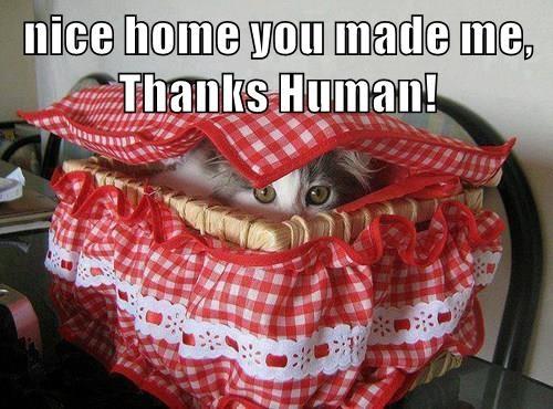 lolcats - Bag - nice home you made me, Thanks Human!