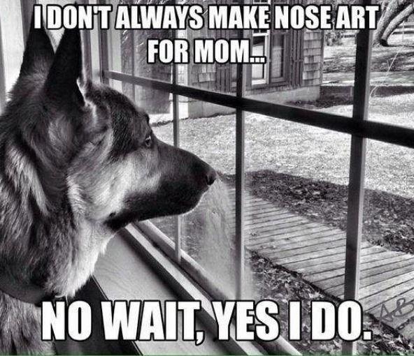 Dog - IDONTALWAYS MAKE NOSE ARTA FOR MOM. NO WAIT, YES I DO
