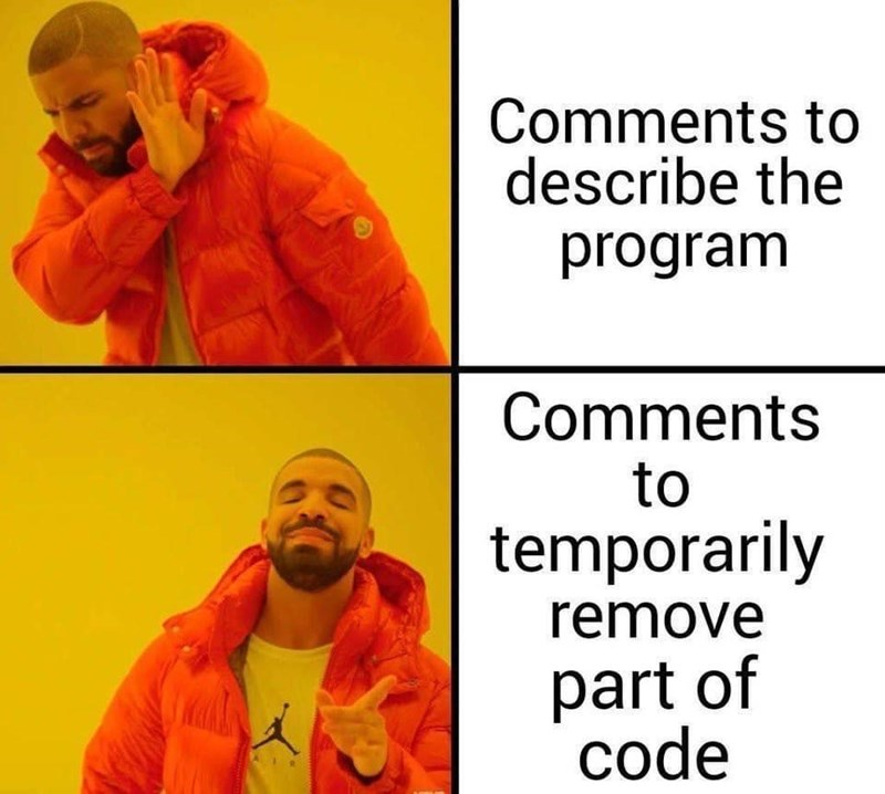 Text - Comments to describe the program Comments to temporarily remove part of code