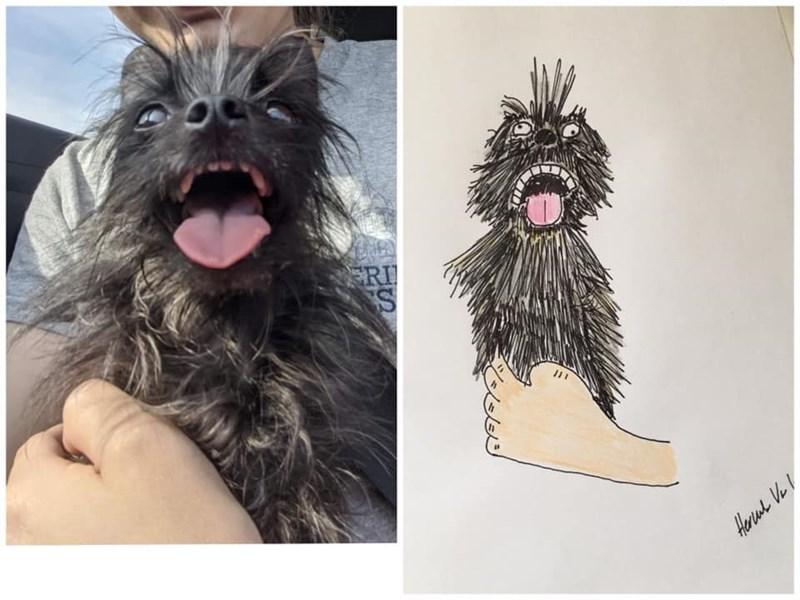 Dog - ERI Herul Ve I