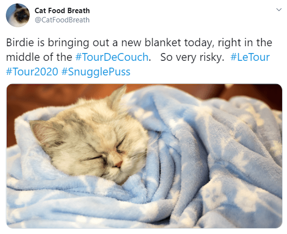 Cat - Cat Food Breath @CatFoodBreath Birdie is bringing out a new blanket today, right in the middle of the #TourDeCouch. So very risky. #LeTour #Tour2020 #SnugglePuss