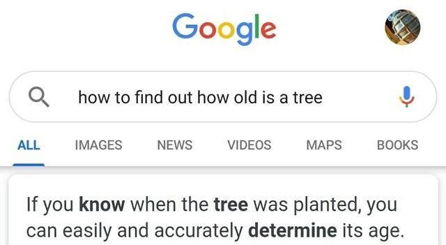 Text - Google Q how to find out how old is a tree ALL IMAGES NEWS VIDEOS МAPS BOOKS If you know when the tree was planted, you can easily and accurately determine its age. 0סיי