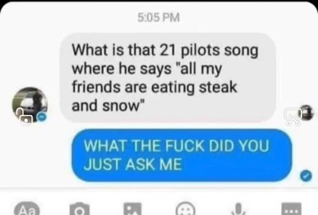 """Text - 5:05 PM What is that 21 pilots song where he says """"all my friends are eating steak and snow"""" WHAT THE FUCK DID YOU JUST ASK ME Aa"""