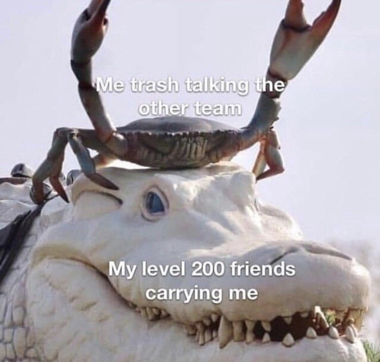 Reindeer - Me trash talking the other team My level 200 friends carrying me