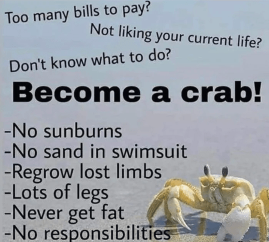 Text - Too many bills to pay? Not liking your current life? Don't know what to do? Become a crab! -No sunburns -No sand in swimsuit -Regrow lost limbs -Lots of legs -Never get fat -No responsibilities