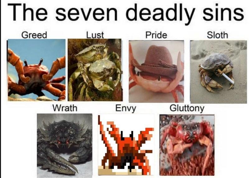 Organism - The seven deadly sins Greed Lust Pride Sloth Wrath Envy Gluttony