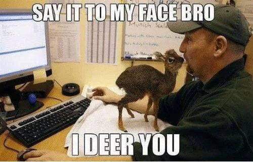 Adaptation - SAY IT TO MY FACE BRO I DEER YOU