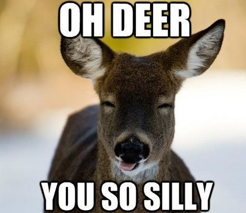 Mammal - OH DEER YOU SO SILLY