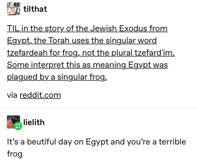 Text - RE tilthat TIL in the story of the Jewish Exodus from Egypt, the Torah uses the singular word tzefardeah for frog, not the plural tzefard'im. Some interpret this as meaning Egypt was plagued by a singular frog. via reddit.com lielith It's a beutiful day on Egypt and you're a terrible frog