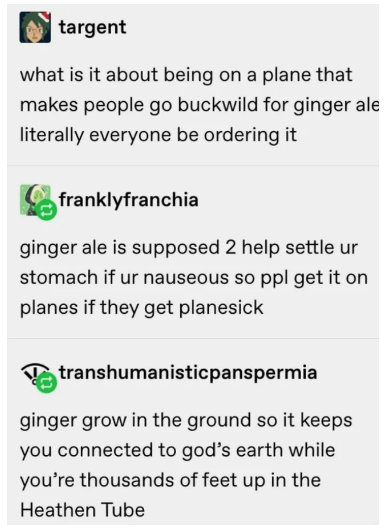Text - targent what is it about being on a plane that makes people go buckwild for ginger ale literally everyone be ordering it franklyfranchia ginger ale is supposed 2 help settle ur stomach if ur nauseous so ppl get it on planes if they get planesick A transhumanisticpanspermia ginger grow in the ground so it keeps you connected to god's earth while you're thousands of feet up in the Heathen Tube