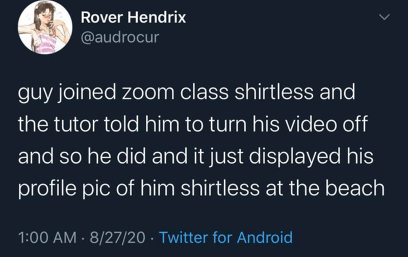 Text - Rover Hendrix @audrocur guy joined zoom class shirtless and the tutor told him to turn his video off and so he did and it just displayed his profile pic of him shirtless at the beach 1:00 AM · 8/27/20 · Twitter for Android