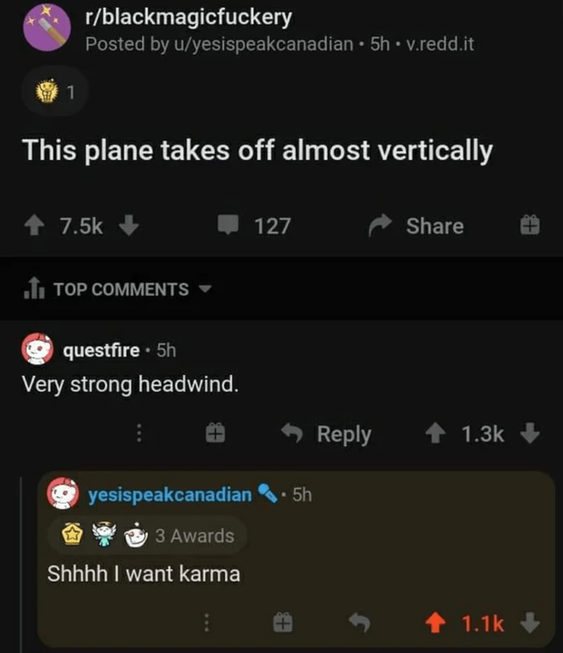Text - r/blackmagicfuckery Posted by u/yesispeakcanadian • 5h • v.redd.it This plane takes off almost vertically 7.5k 127 Share fi TOP COMMENTS questfire · 5h Very strong headwind. + Reply 1 1.3k yesispeakcanadian 5h 3 Awards Shhhh I want karma 1.1k