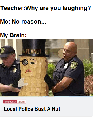 Police officer - Teacher:Why are you laughing? Me: No reason... My Brain: R.PEANUT BREAKING 3 MIN Local Police Bust A Nut