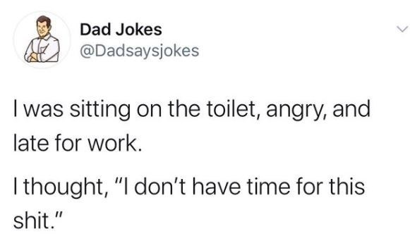 """Text - Dad Jokes @Dadsaysjokes I was sitting on the toilet, angry, and late for work. I thought, """"I don't have time for this shit."""""""